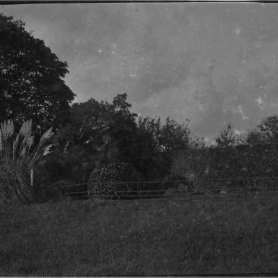 9F Flower garden from near tennis lawn, 22 Oct 1913.jpg