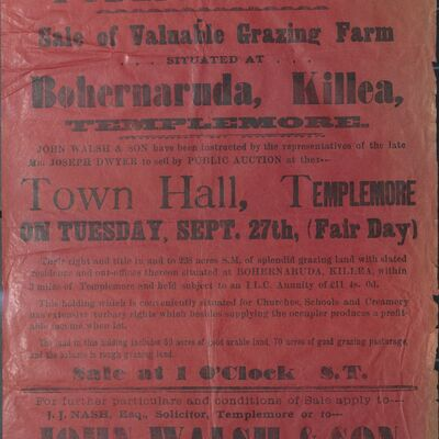 Walsh_and_Son_Auction_Posters_043.jpg
