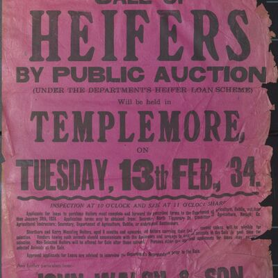 Walsh_and_Son_Auction_Posters_046.jpg