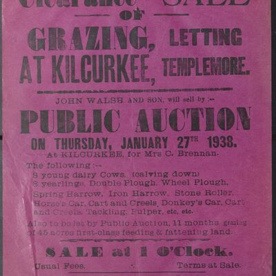 Walsh_and_Son_Auction_Posters_049.jpg